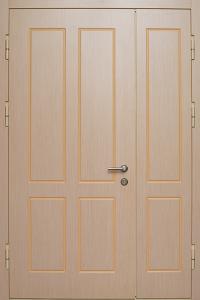 Глухая противопожарная дверь ДМП 02 №25 EI60 вид внутри