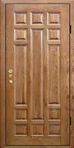 Входная дверь М220 вид снаружи