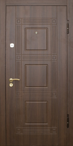Входная дверь ТР71 вид снаружи