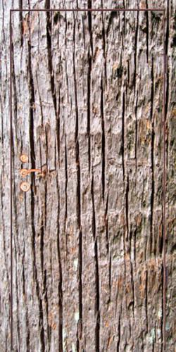 Входная дверь ФП7 — фото 1