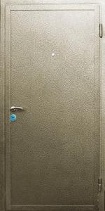 Тамбурная дверь Т50 вид снаружи
