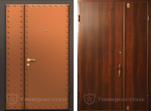Фото Тамбурная дверь Т111